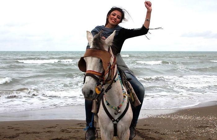 iran-horse