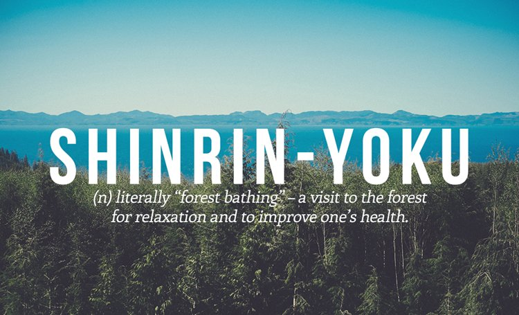 japanese-words-shirin-yoku