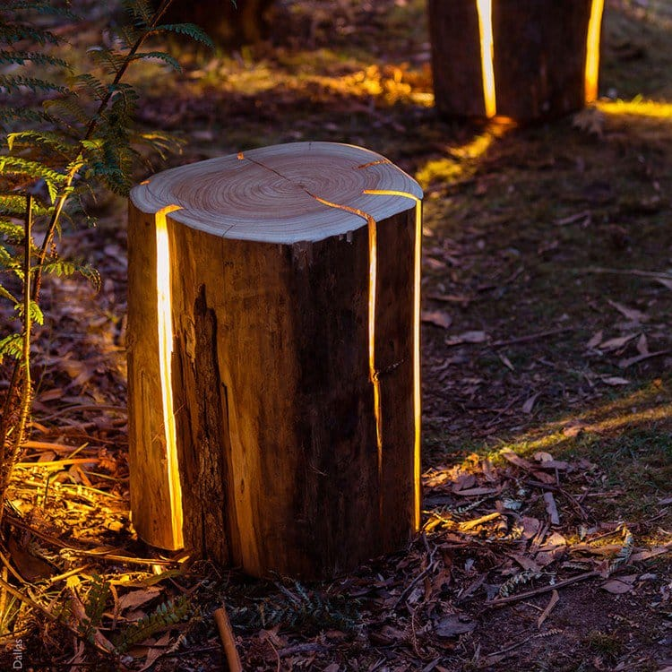 log lamp woods