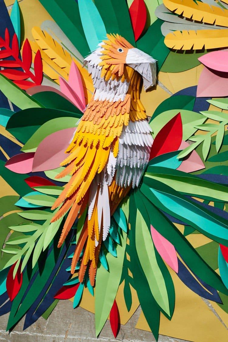 parrot orange paper