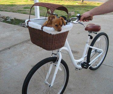 pet bicycle basket dog