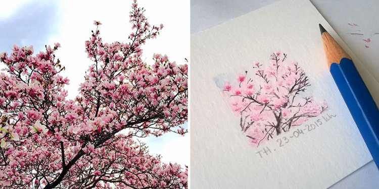 tiny-spring-illustrations-kasia-haldas-blssom
