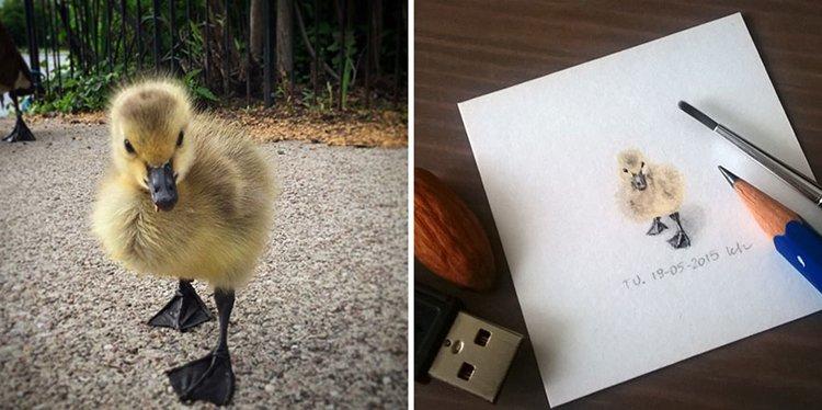tiny-spring-illustrations-kasia-haldas-duckling