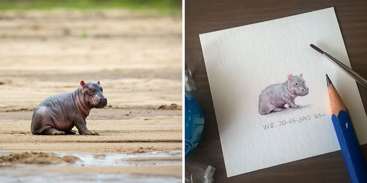 tiny-spring-illustrations-kasia-haldas-hippo