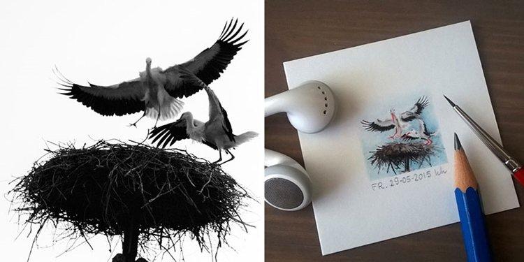 tiny-spring-illustrations-kasia-haldas-nest