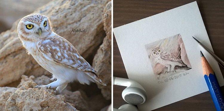 tiny-spring-illustrations-kasia-haldas-owl