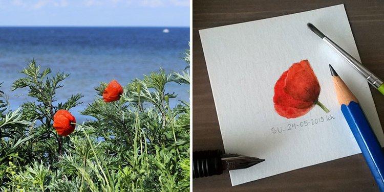 tiny-spring-illustrations-kasia-haldas-poppy