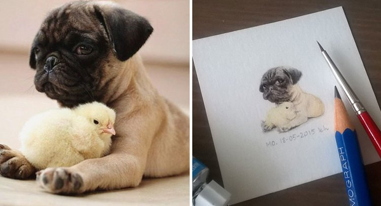 tiny-spring-illustrations-kasia-haldas-pug-chick