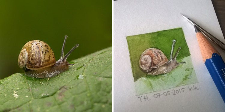tiny-spring-illustrations-kasia-haldas-snail