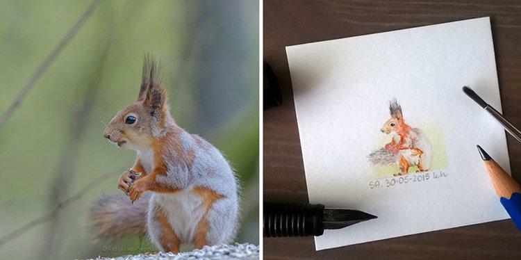 tiny-spring-illustrations-kasia-haldas-squirrel