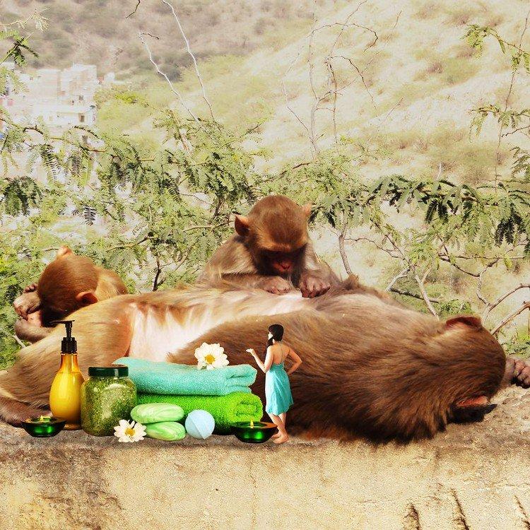 tiny woman monkey spa