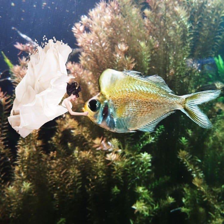tiny woman underwater fish