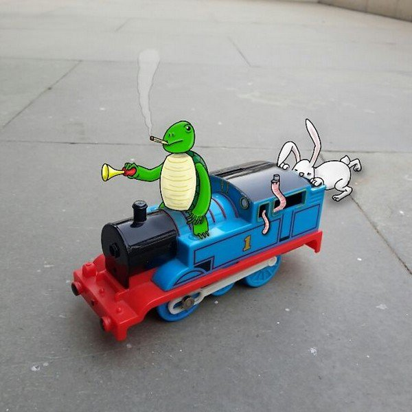 train animals