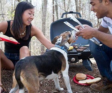 travel grill camping