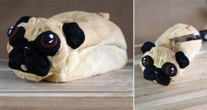 Baker Creates Pugloaf