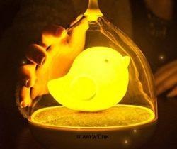 Birdcage LED Night Light