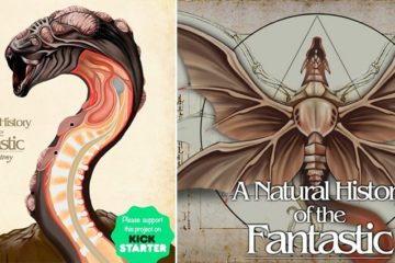 Christopher Stoll Anatomy Of Fantasy Creatures