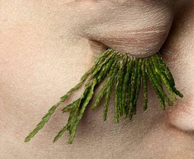 Fake-eyelashes-made-of-plants-graham
