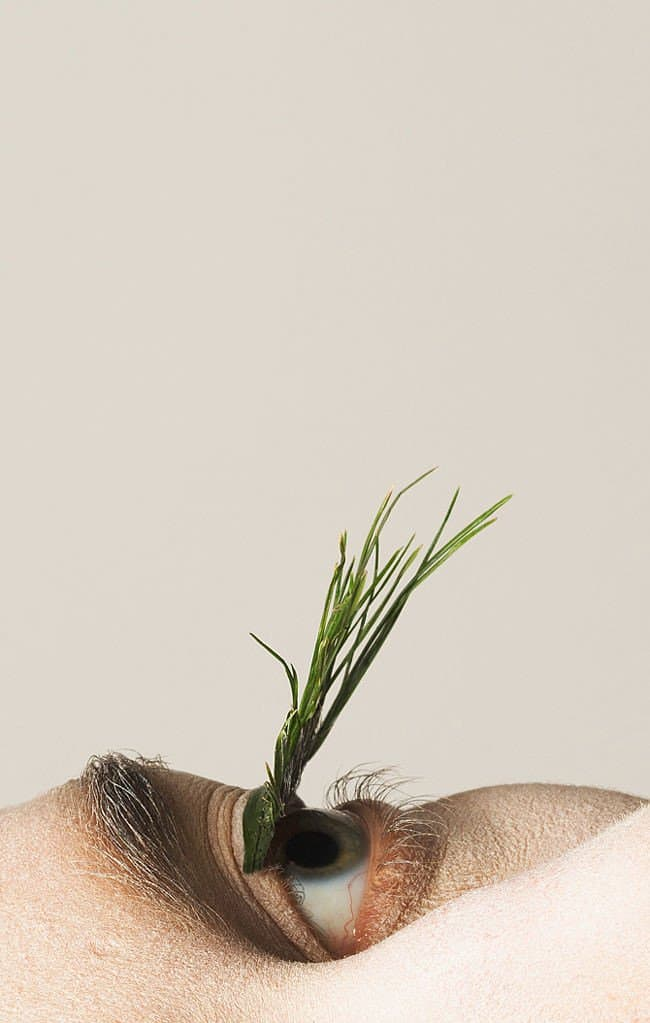Fake-eyelashes-made-of-plants-know-what-natural-beauty-is-all-about