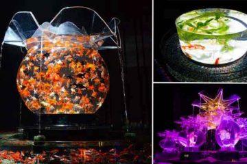 Fish Tanks In Tokyo Art Aquarium