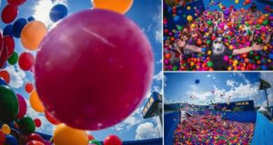 Ikea Ball Pit For Grownups