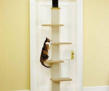 Multi-Level Cat Climber