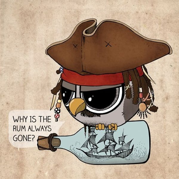Sowulka-little-rounded-owl-jack-sparrow