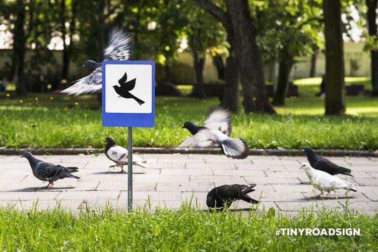 birds crossing sign