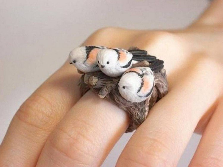 birds ring