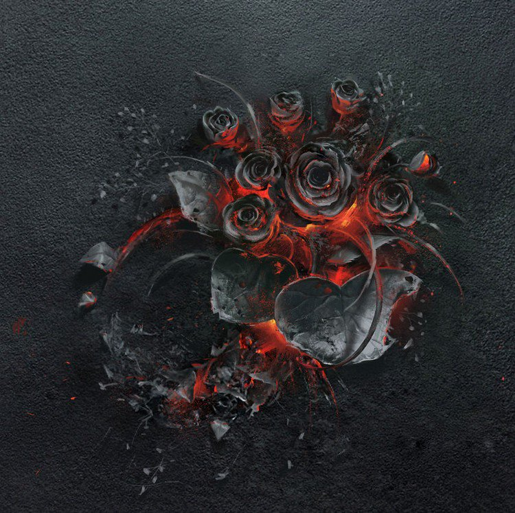 black roses burning