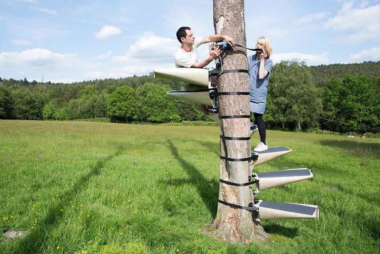 These Spiral Staircases Can Be Strapped On To Any Tree