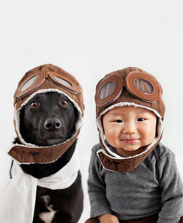 dog baby flying hats