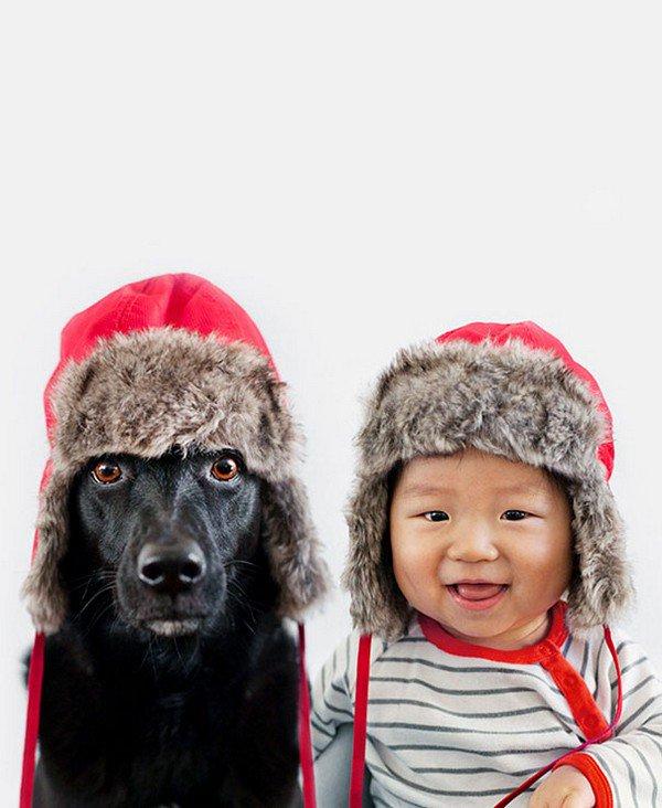 dog baby furry hats