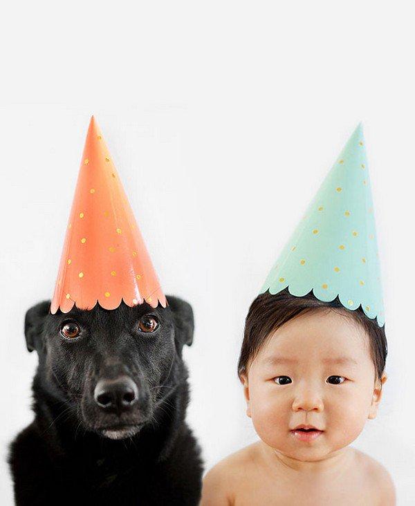 dog baby hats