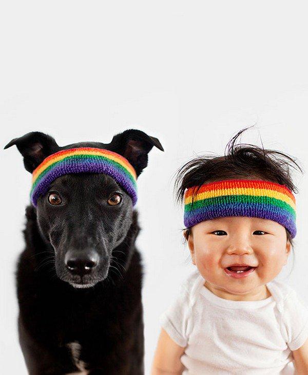 dog baby headbands