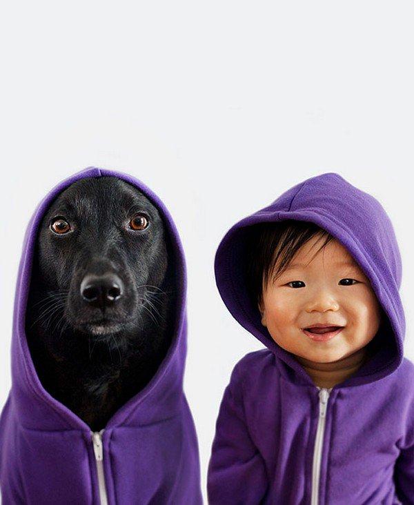 dog baby hoodies