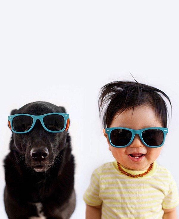 dog baby sunglasses