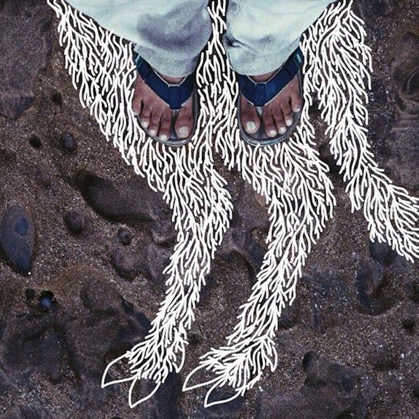 feet-fawn