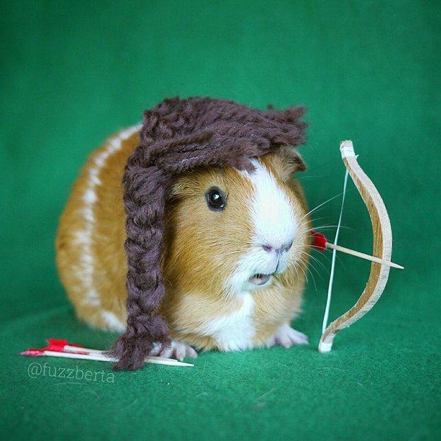 fuzzberta-cosplaying-guinea-pig-katniss