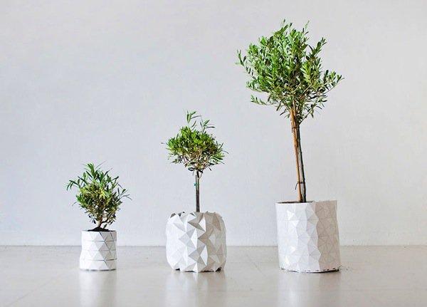 growth-big-pots