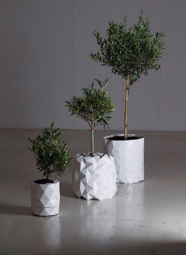 growth-three