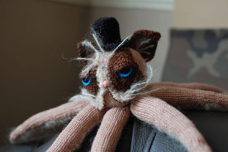 grumpy-catipus-zane