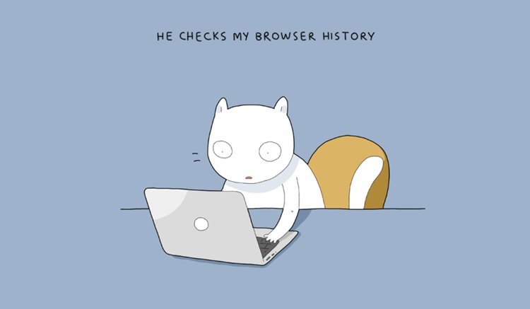 home-alone-cat-browser