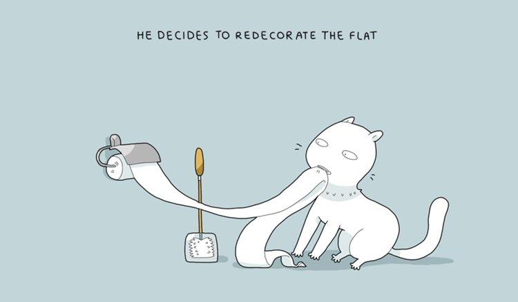 home-alone-cat-decorate