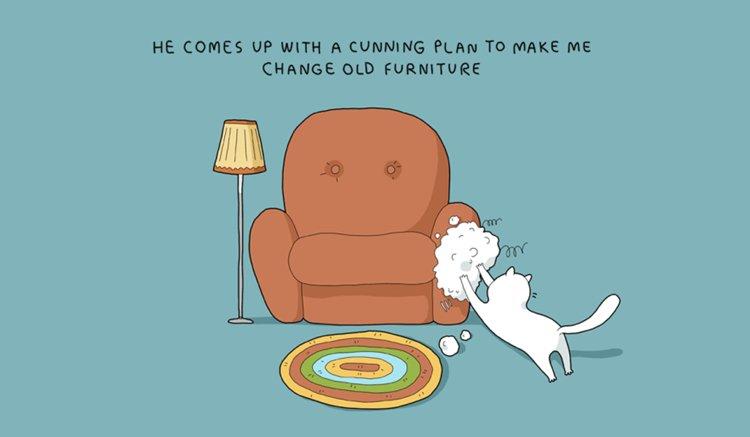 home-alone-cat-furniture