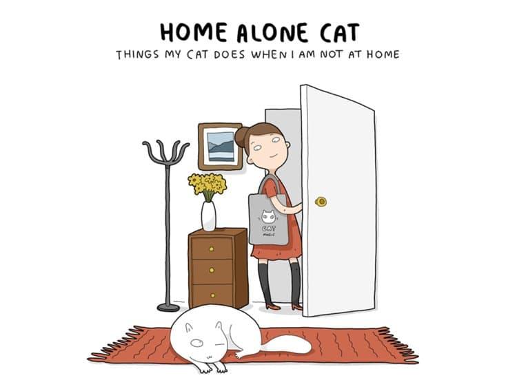 home-alone-cat-top