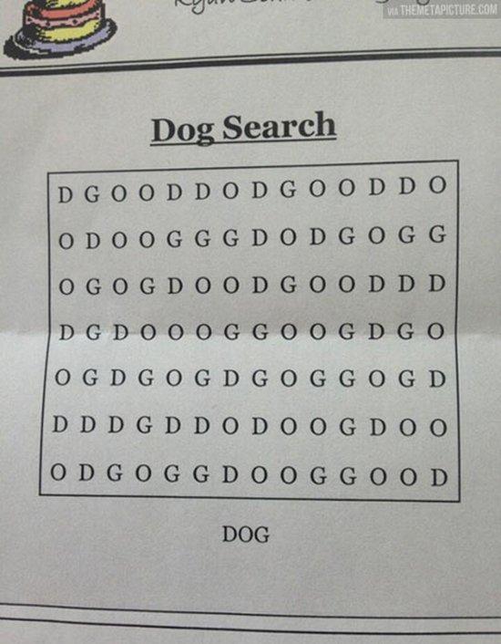 jerks-dog-search