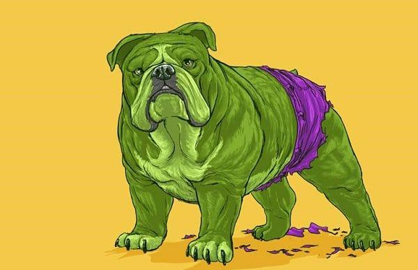marvel-dogs-bulldog-hulk