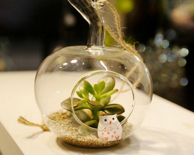 owl plant terrarium