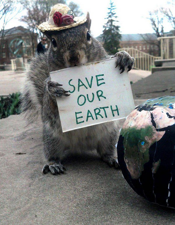 save the earth squirrel